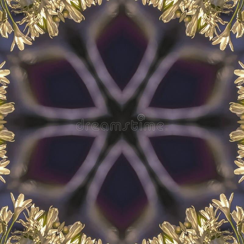 Forme rougeoyante intéressante d'étoile de place avec les fleurs blanches relfected autour de elle dans la conception d'espace ab illustration stock