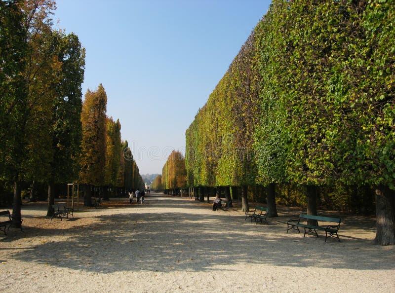 Formele tuinpassage in de herfst in Wenen royalty-vrije stock afbeeldingen