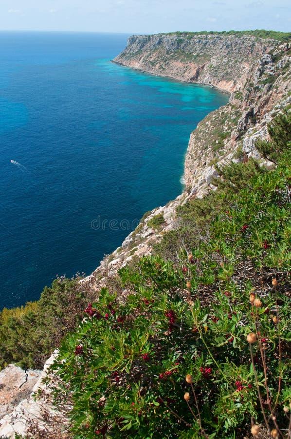 Download Formentera, Îles Baléares, Espagne, L'Europe Image stock - Image du falaises, destination: 76086245