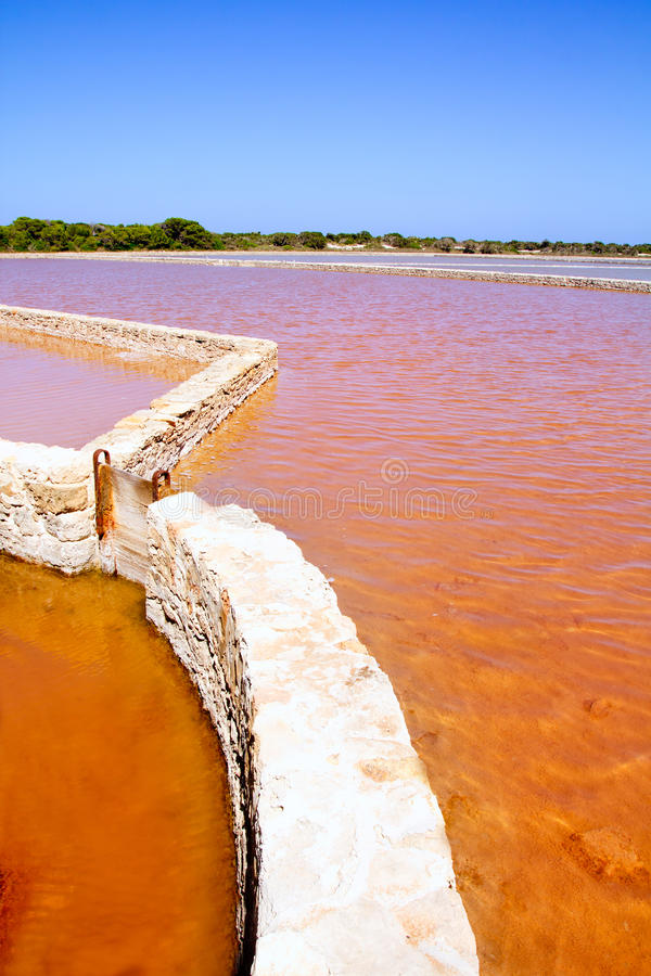 Formentera Ses Salines盐厂红潮 免版税库存照片