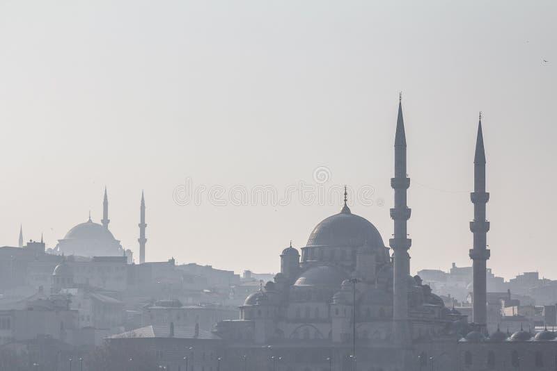 Former av moskéerna av Sultanahmet eller den blåa moskén och Eminonu i skuggan, i Istanbul, med kupolerna och minaren royaltyfria foton