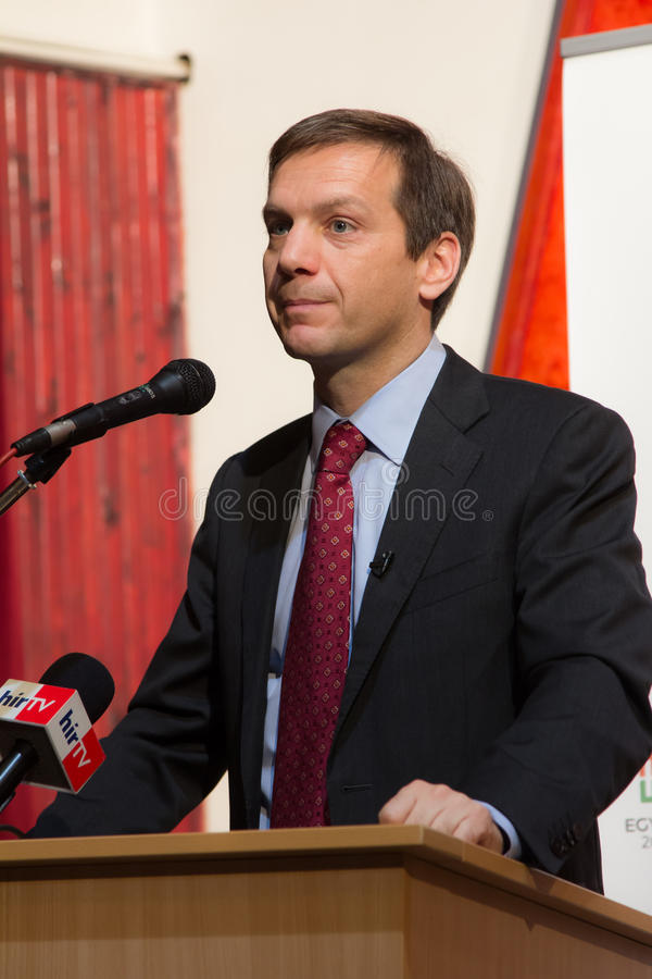 Former prime minister of Hungary, Mr. Gordon Bajnai. Gives a speech on Februar 8, 2013, Veresegyhaz, Hungary royalty free stock image