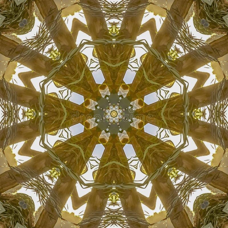 Formes angulaires sauvages de place d'une composition florale montrant seulement des feuilles et des tiges images stock
