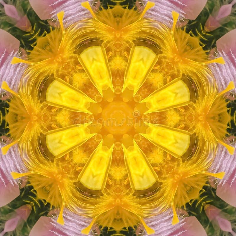 Formes faites par Digital de place de quelques plumes colorées photographie stock