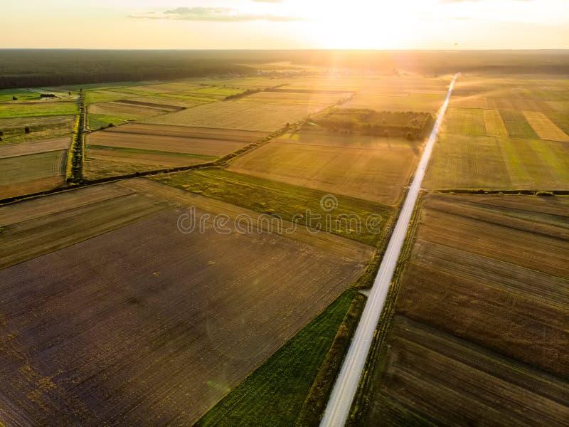 Formes géométriques des colis agricoles de différentes cultures dans des couleurs vertes et jaunes Vue aérienne des terres cultiv images stock