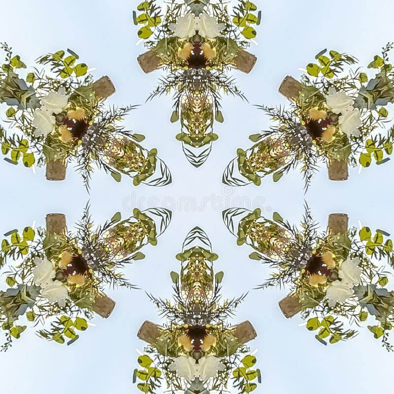 Formes intéressantes de dessin géométrique de cadre carré d'un modèle floral contre le ciel photographie stock