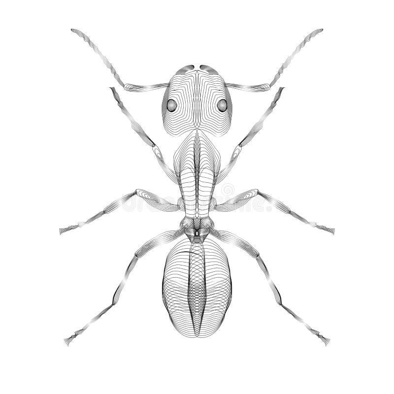 formica illustrazione di vettore di stile 3d per il tatto della stampa illustrazione vettoriale
