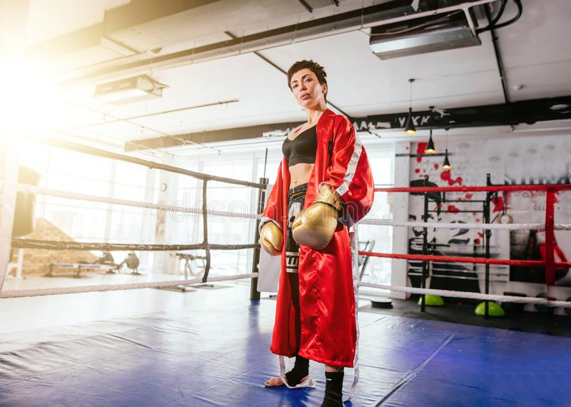 Formidabelt wonan i sportig utrustning för att boxas den seende kameran på cirkeln på idrottshallen royaltyfri bild