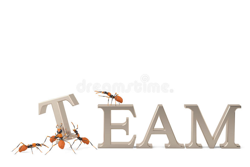 Formigas da cooperação e da colaboração dos trabalhos de equipa que constroem o texto de aço ilustração stock