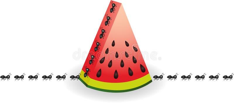 Formigas na fatia da melancia ilustração do vetor