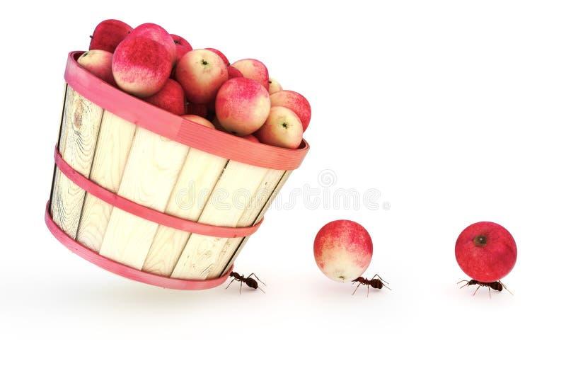 Formigas que levam maçãs ilustração do vetor