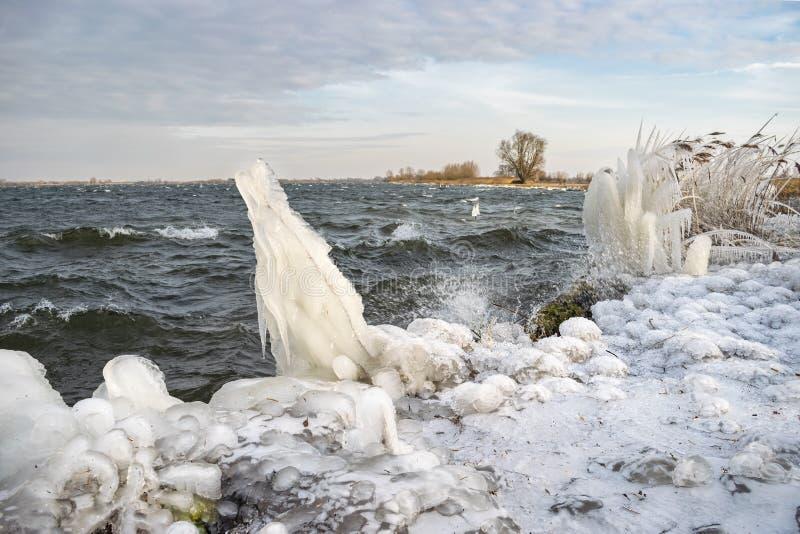 Formulários estranhos do gelo na costa de um lago durante um período frio no inverno imagem de stock royalty free