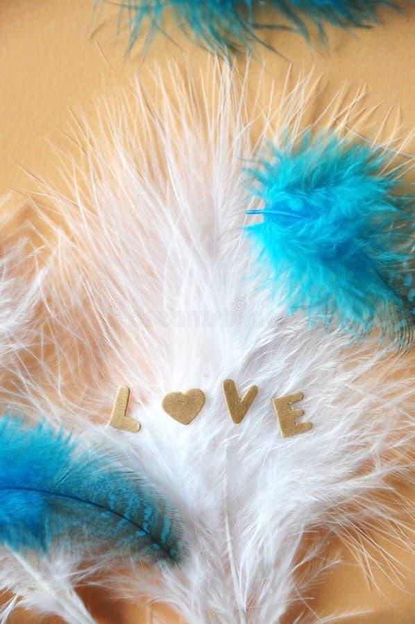 Formulazione dell'amore sul fondo regolare delle piume immagine stock libera da diritti