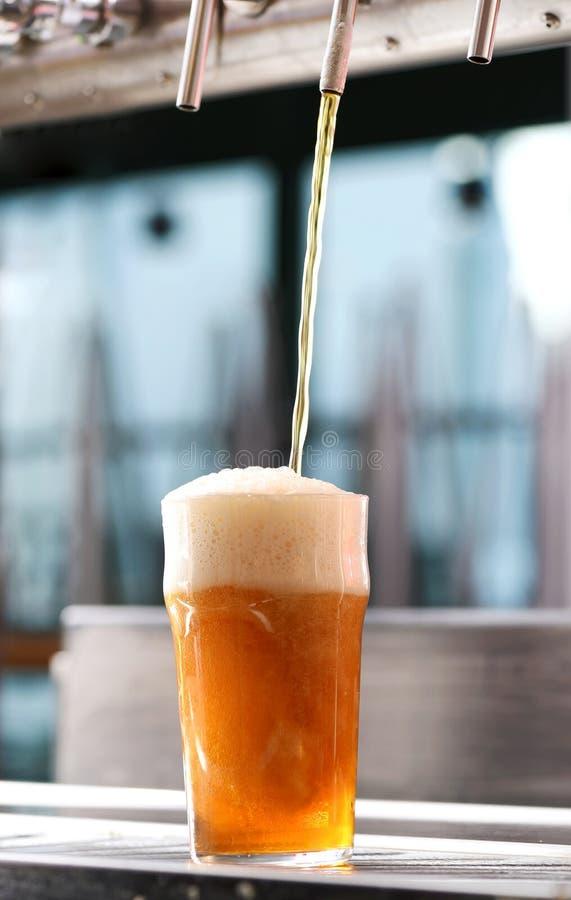Formulera ett exponeringsglas av öl från ett klapp i en bar royaltyfria foton