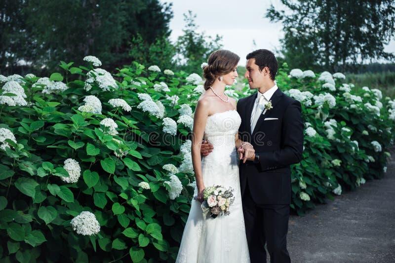 Fornal i panna młoda cuddling romantically fotografia royalty free