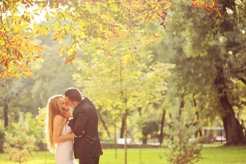 Fornala i panny młodej całowanie w parku zdjęcie stock