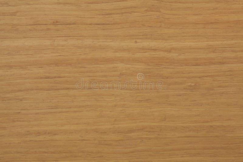 Fornirowa drewniana tekstura obrazy royalty free