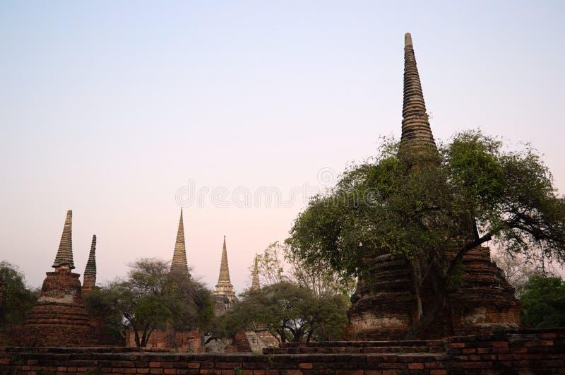 Forntida buddistisk pagod i Wat Phra sisanphet royaltyfri bild