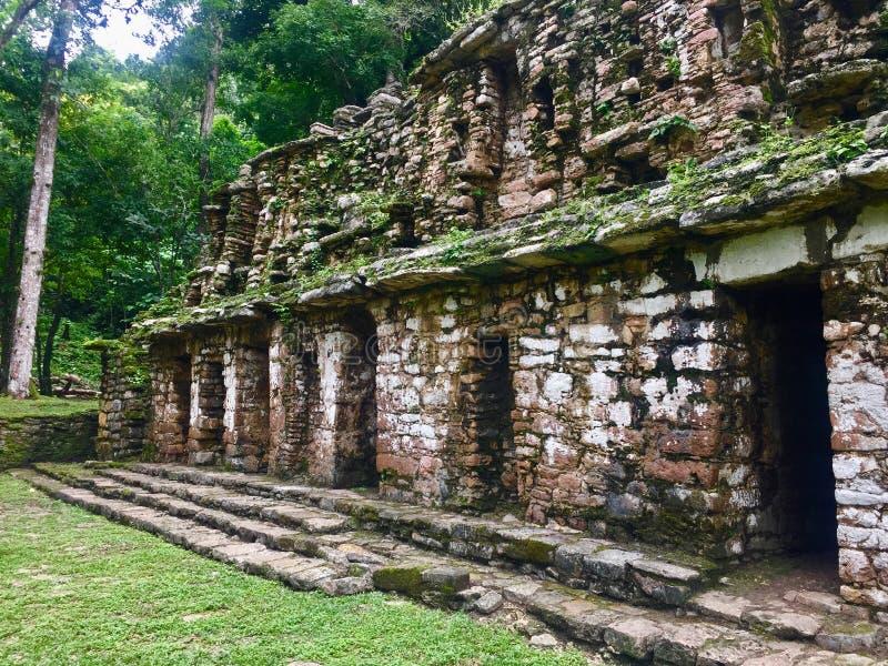 Forntida byggnad - Guatemala - naturliv arkivfoton