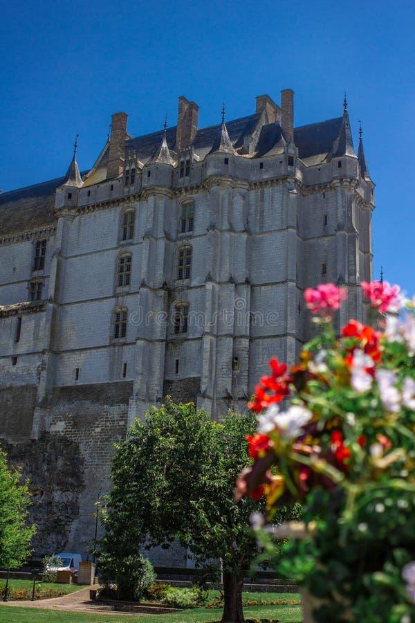 Forntida Châteaudun slott med blomman royaltyfri foto