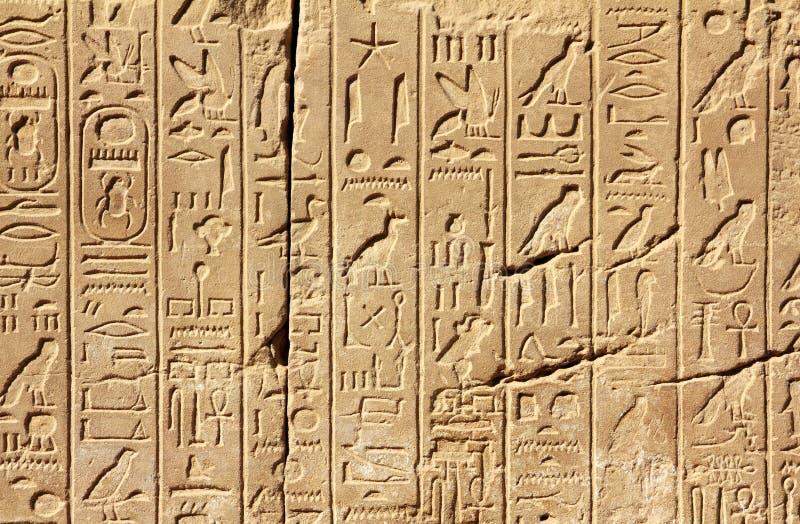 forntida egypt hieroglyphicsvägg arkivbild