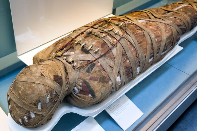 Forntida egyptisk mamma arkivbild