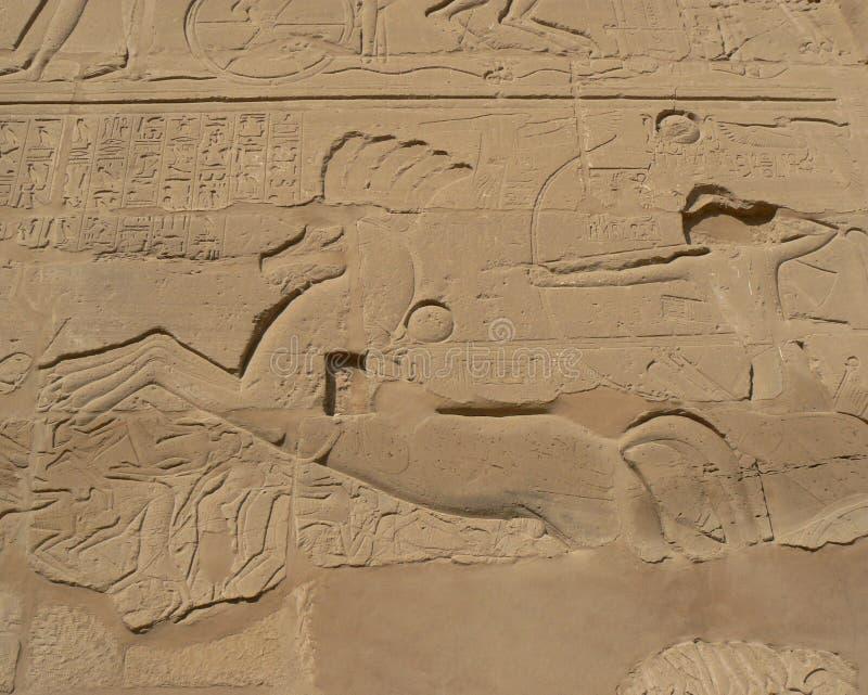 forntida egyptisk skrift royaltyfri fotografi