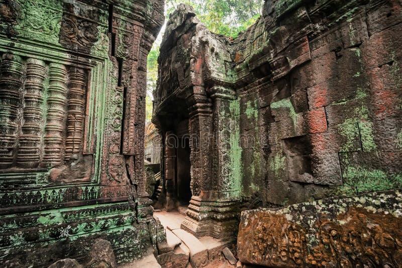 Forntida en khmerarkitektur Tempel för Ta Prohm på Angkor, Siem Reap, Cambodja royaltyfri foto