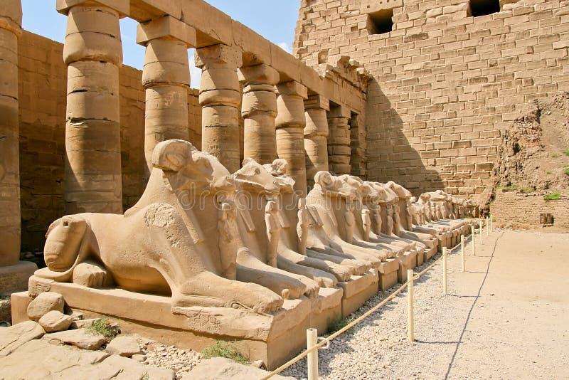 Forntida fördärvar av det Karnak tempelet i Egypten royaltyfria foton