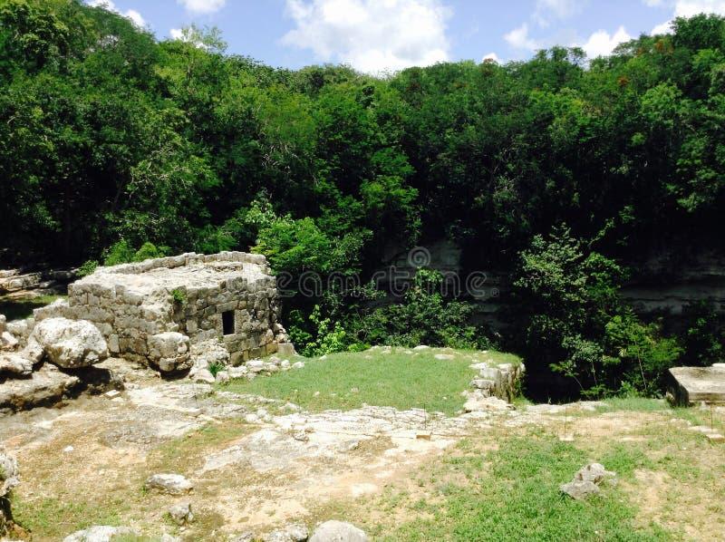 Forntida fördärvar inom djungeln arkivfoton