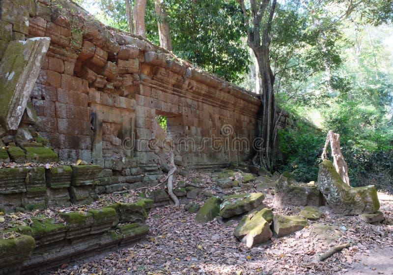 Forntida förfallen stenvägg i rainforestfragmentet av gamla befästningar Bevuxet med mossastenen fördärvar arkivfoto