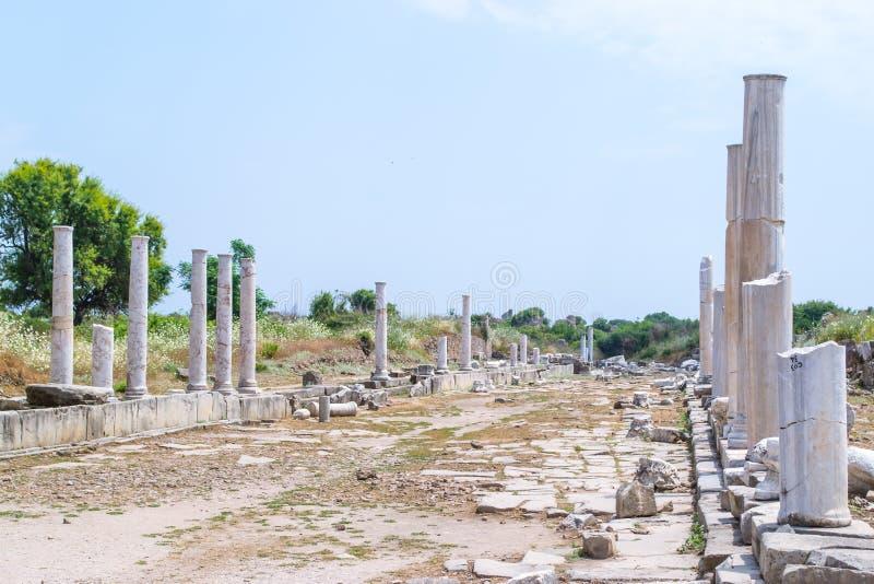 forntida gata kalkon Sidostad arkivbilder