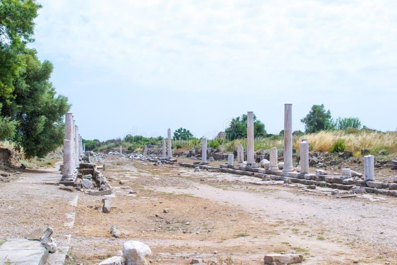 forntida gata kalkon Sidostad arkivbild