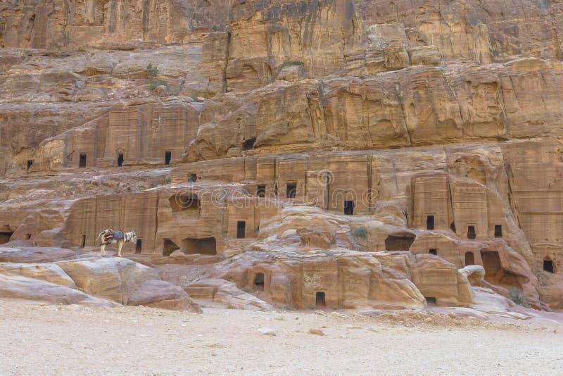 Forntida hus på fasadgatan i Petra sned ut ur vagga arkivfoton