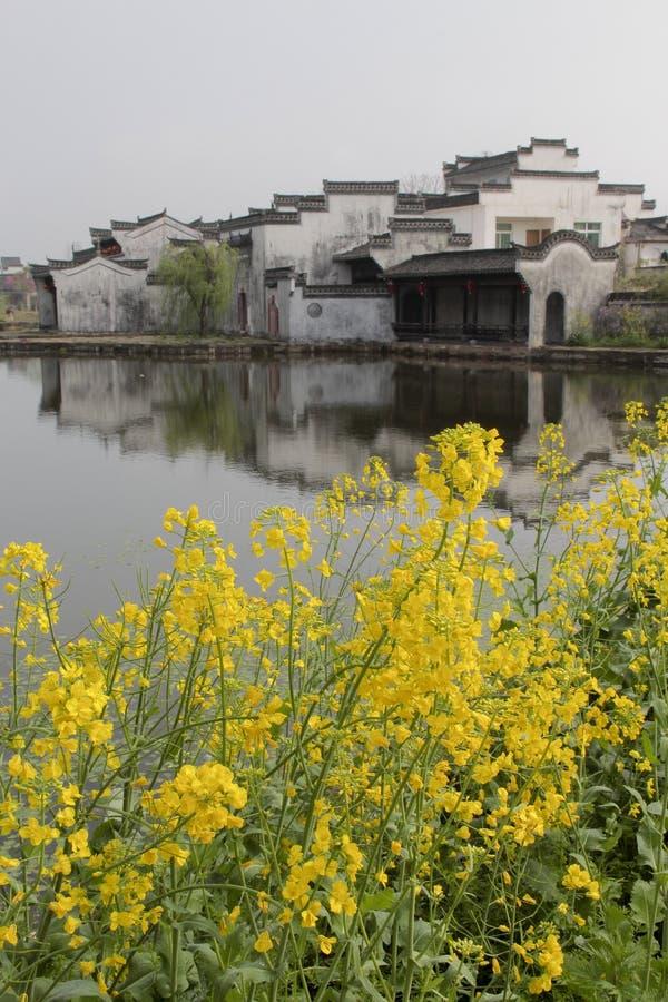Forntida kinesisk by med rapsfröblomman arkivfoton