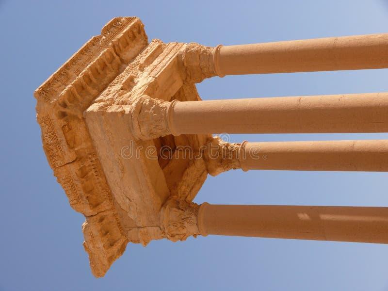 forntida kolonnpalmyra syria royaltyfria bilder