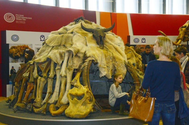 Forntida mänsklig boning Internationell arkeologisk utställning moscow Höst trafik royaltyfri fotografi