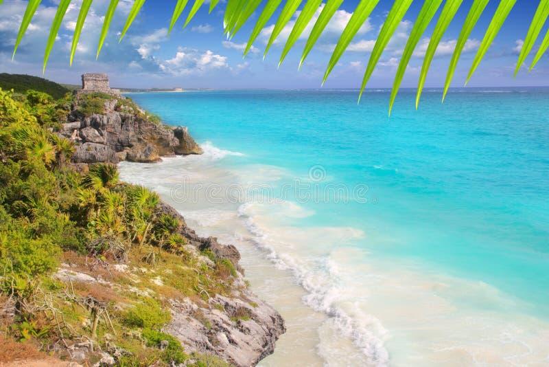 Forntida Mayan fördärvar Tulum karibisk turkos royaltyfri fotografi