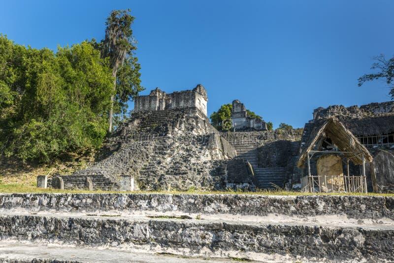 Forntida Mayan pyramid i Tikal Guatemala arkivfoton