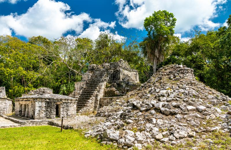 Forntida Mayan pyramid p? Muyil i Quintana Roo, Mexico royaltyfri fotografi