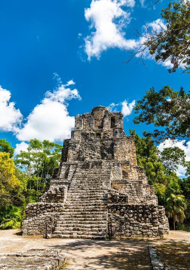 Forntida Mayan pyramid p? Muyil i Quintana Roo, Mexico royaltyfria bilder