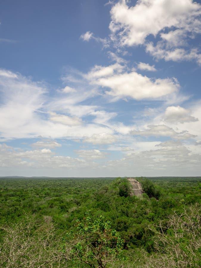 Forntida Mayan stenstrukturresning ut ur djungelmarkisen på royaltyfri foto