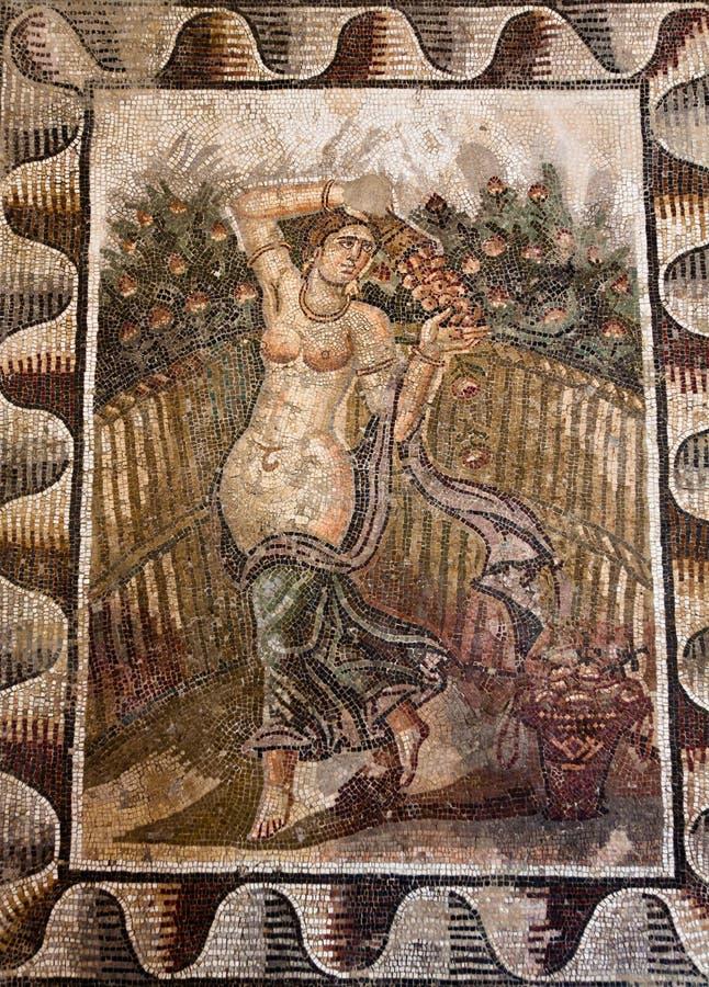 forntida mosaik royaltyfri bild