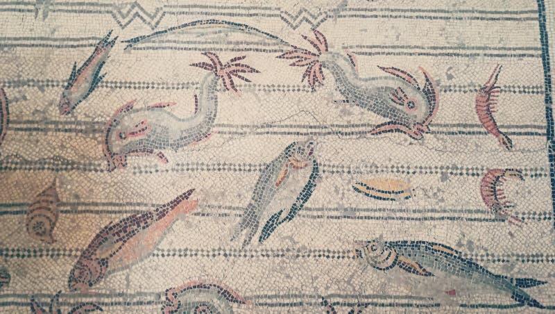 Forntida mosaik av fisk- och havsreptilar på väggarna av det Bardo museet i Tunisien vektor illustrationer