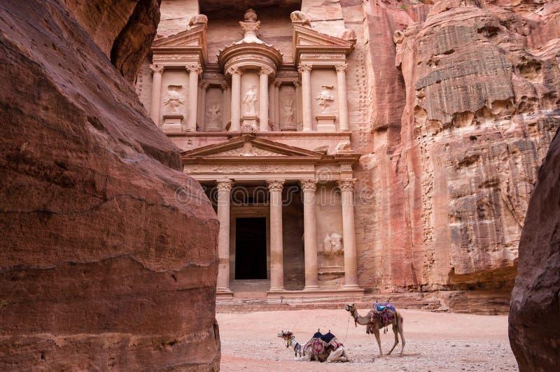 Forntida nabataean tempel Al Khazneh Treasury som lokaliseras på den rosa staden - Petra, Jordanien Två kamel i framdel av ingång arkivfoton