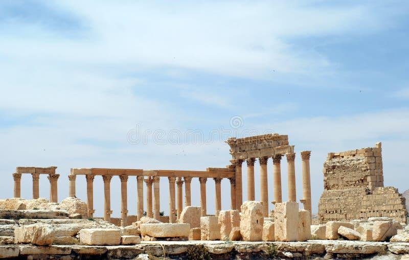 forntida palmyra syria royaltyfri fotografi