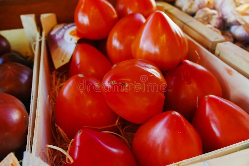 Forntida Provencal franska tomater på gatamarknaden royaltyfri foto