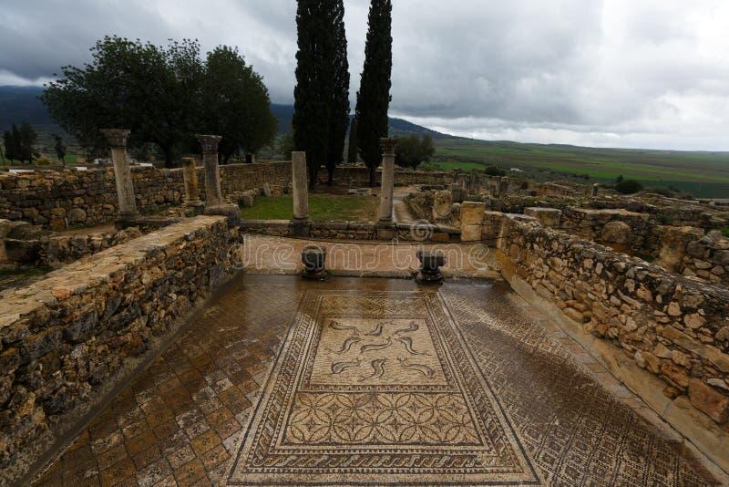 Forntida roman Volubils fördärvar och mosaiker arkivbild