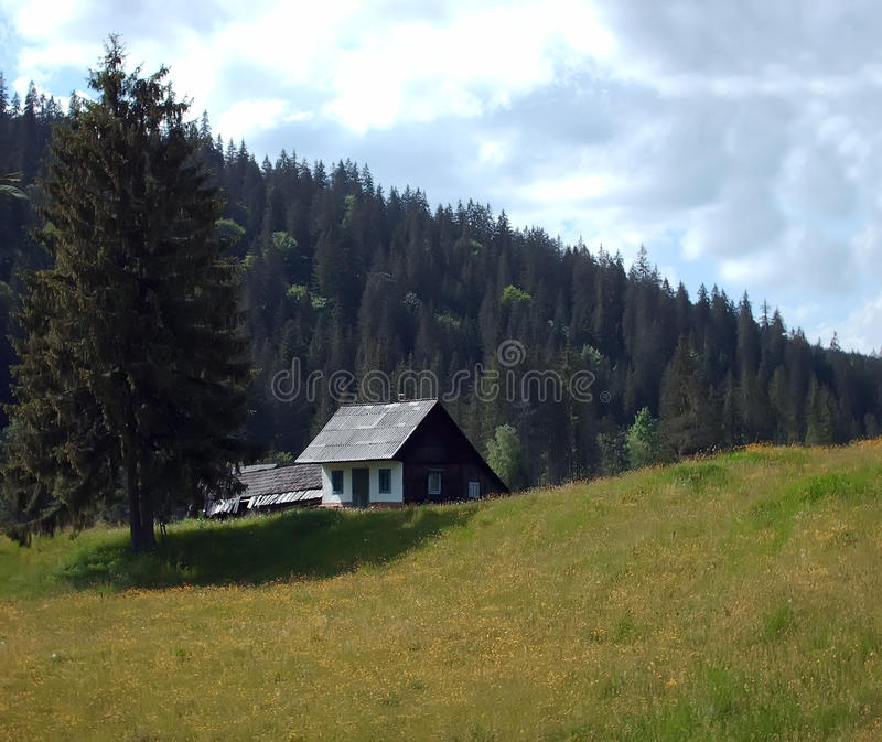 forntida skoghus royaltyfri foto