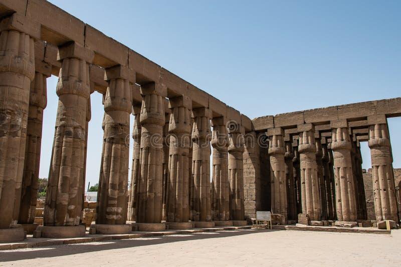 Forntida skulpturer och kolonnhieroglyf och lättnadsgravyrer som snidas in i en stenvägg på den Luxor templet av Amun-rommar royaltyfri bild